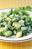 Cucumber and ground elder salad with Apple