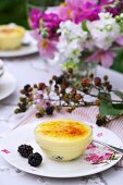 Creme brulee with apple and blackberries