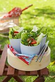 Thai salad with chicken in a bowl for a picnic