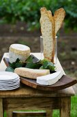 Cheese and crackers on a garden table