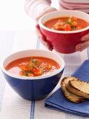 Provençal fish soup with garlic toast