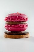 Raspberry macaroons on chocolate and sable (France)