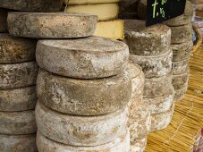 Local Cheeses on Display at the Chamonix Saturday Morning Market; Haute-Savoie, France