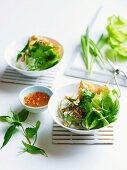Rice noodles with tofu puffs, Asian herbs and chili sauce