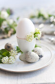 A breakfast egg with quail's eggs and spiraea