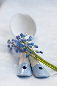 Enamel spoons and grape hyacinths