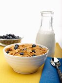 Bowl of Wheat Flake Cereal with Fresh Blueberries; Bottle of Milk