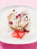 Fresh oysters on a plate of sea salt