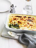 Potato and leafy vegetable back with cheese sauce