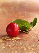 A cherry plum with leaves