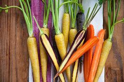 Yellow carrots (Pfälzer Loberricher), purple carroty (anthonia) and orange carrots