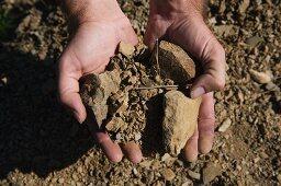 Hands holding licorella soil (barren soil in the wine growing region of Priorat, Catalonia)