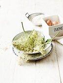 Ingredients for fried elderflowers (elderflowers, eggs, flour)