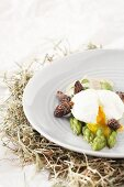 Poached egg with asparagus and morels