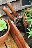A pair of shears and flowerpots
