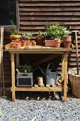 Plants and gardening tools on a wooden table