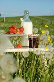 Strawberries and jam in front of a bottle of milk on a stool in a summery meadow