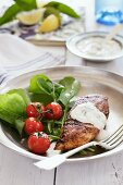 Grilled chicken breast with tzatziki and salad
