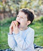 A little boy biting into an apple