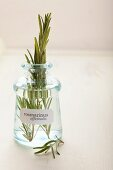 Sprigs of rosemary in an apothecary bottle