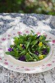 Feldsalat mit Veilchenblüten und -blättern