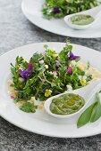 Frühlingskräutersalat mit Grünerbs-Bärlauch-Mousse