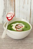 Cream of broccoli soup with radishes