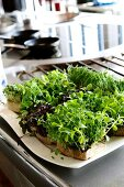 Assorted edible shoots in the kitchen