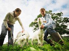 Junge und Mädchen mit Ziegen