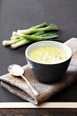 Bowl of Leek and Potato Soup