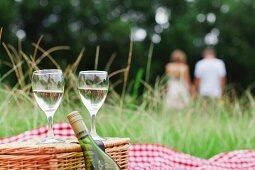 Glasses of wine at picnic