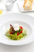 Avocado tart with cherry tomatoes and creme fraiche
