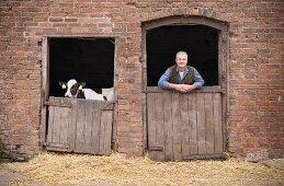 A farmer and a calf looking over barn doors