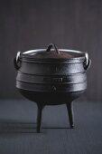 Potjiekos (three-legged cast iron cooking pot)