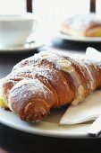An almond croissant dusted with icing sugar