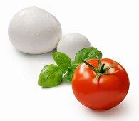 A tomato, basil and mozzarella