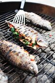 Whole Grilled Stuffed Trout on a Charcoal Grill