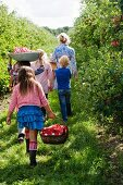A mother and her children walking through an apple orchard