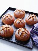 Bread rolls on a baking tray