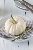 An autumnal place setting with an ornamental squash
