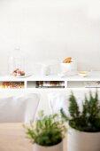 Käseglocke, Kuchenplatte und Tütenschale auf Ablage, Tisch mit Kräutern unscharf im Vordergrund
