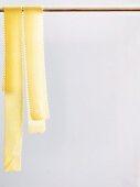 Fresh pasta ribbons hung up to dry