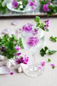 Scented pelargoniums frozen into spherical ice cubes in glass of lime water