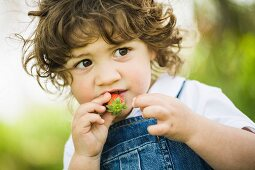 A small boy trying a strawberry
