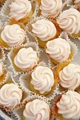Mini Vanilla Frosted Cupcakes in Paper Liners