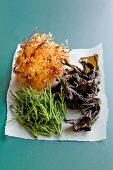Various types of seaweed