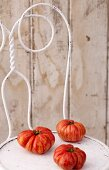 Three Heirloom Tomatoes on a White Chair