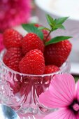 Raspberries and a sprig of mint in a crystal glass