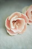 Pale Pink Icing Flowers Ready to Go on a Cake
