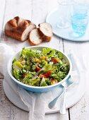 Gemischter Salat mit Alfa-Alfa Sprossen